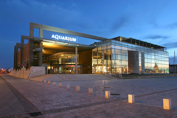 aquarium LR